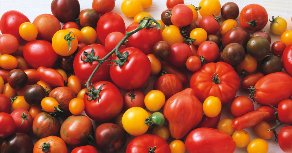 tomaten rezepte k cheng tter. Black Bedroom Furniture Sets. Home Design Ideas
