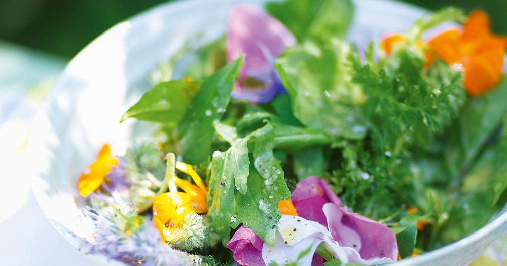Kräuter-Blüten-Salat mit Ziegenkäse und Holundervinaigrette