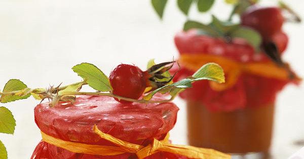 hagebutten zwiebel sauce rezept k cheng tter. Black Bedroom Furniture Sets. Home Design Ideas