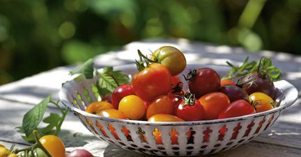 wir sehen rot tomaten k cheng tter. Black Bedroom Furniture Sets. Home Design Ideas