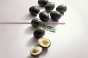 Avocado Sorten Reed