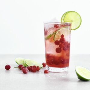 Cranberry-Lime-Spritzer