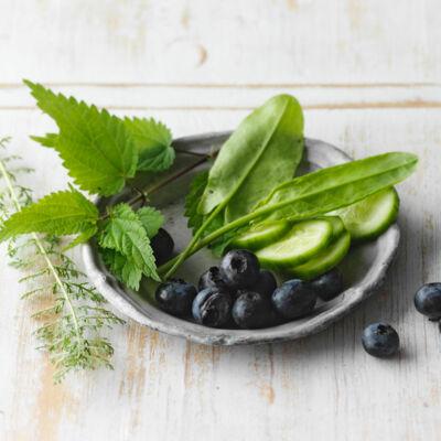Kohlenhydrate und Fettabbau
