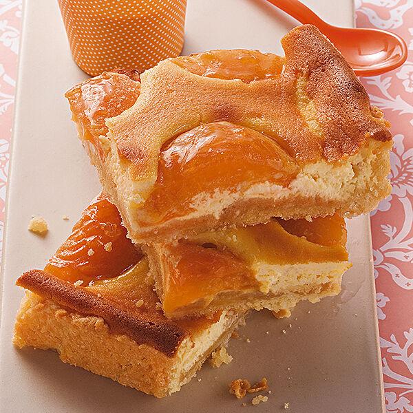 Aprikosen Quark Blechkuchen Rezept Kuchengotter