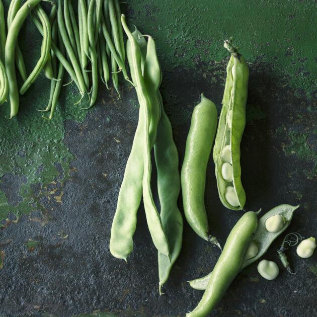 wie lange kochen grüne bohnen