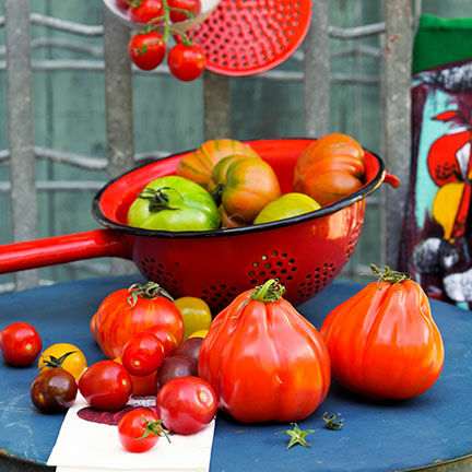 wir suchen eure besten tomaten rezepte jetzt mitmachen und gewinnen k cheng tter. Black Bedroom Furniture Sets. Home Design Ideas