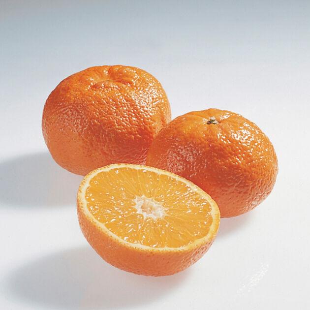 mandarinen clementinen satsumas kumquats k cheng tter. Black Bedroom Furniture Sets. Home Design Ideas