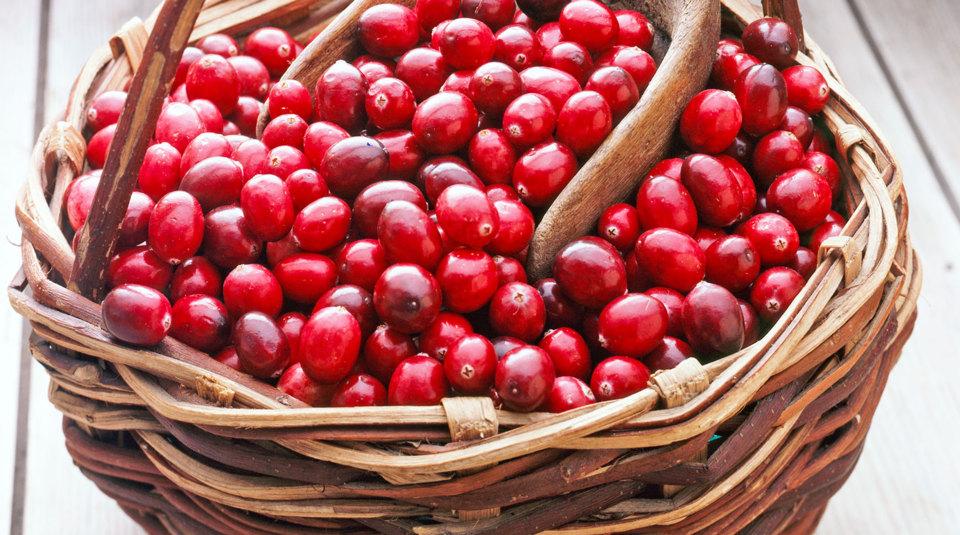 cranberries rezepte und infos k cheng tter. Black Bedroom Furniture Sets. Home Design Ideas