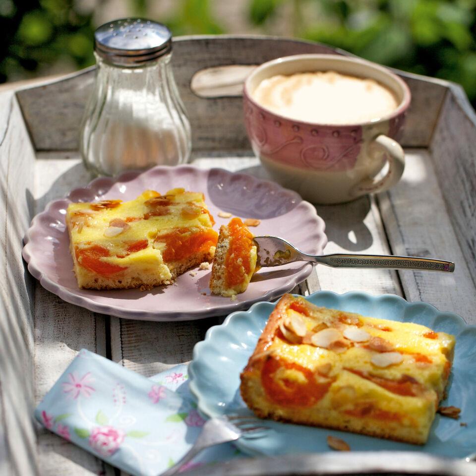 Aprikosen Schmand Kuchen Rezept Kuchengotter