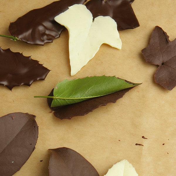schokoladenbl tter rezept k cheng tter. Black Bedroom Furniture Sets. Home Design Ideas