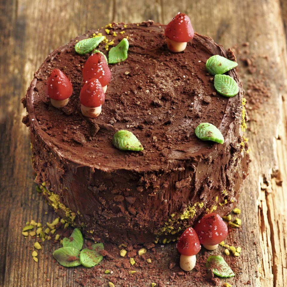Schoko Baumstamm Torte Mit Ganache Rezept Kuchengotter