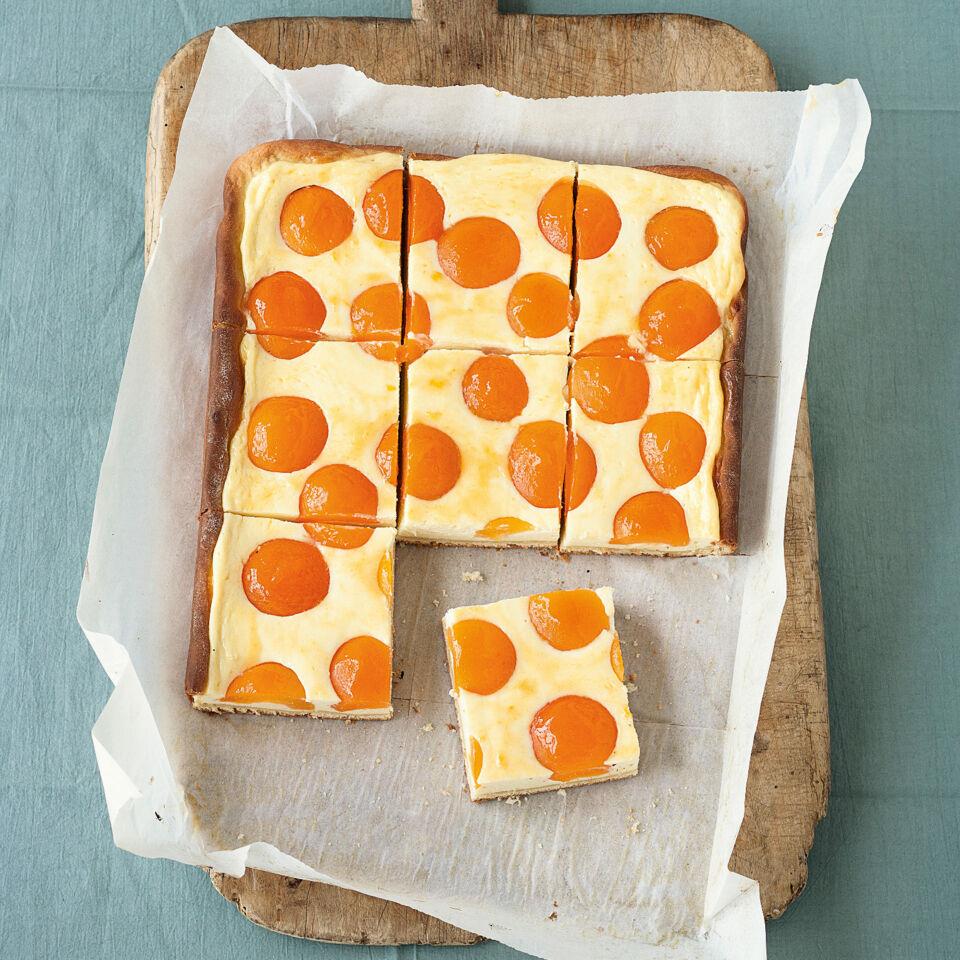 Aprikosen Quark Kuchen Rezept Kuchengotter