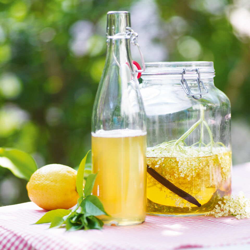 Holunderblütensirup Rezept | Küchengötter